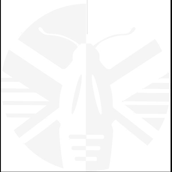 Lineata Logo - white